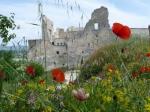 Schloss von Lacoste